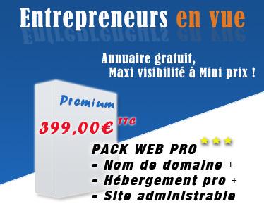Portail Entrepreneurs en vue, annuaire des entrepreneurs gratuit : Maxi visibilité à Mini prix pour tous les entrepreneurs ! Mise en relation entre entrepreneurs et/ou particuliers, sites internet complets à prix minis avec référencement optimisé, relooking, développement sur mesure, sites de vente en ligne: Entrepreneurs en vue