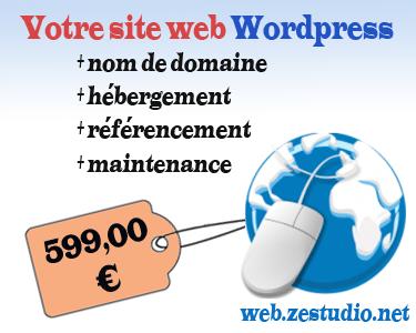 Pack création de site internet wordpress pour petits budgets par Ze Studio Annecy